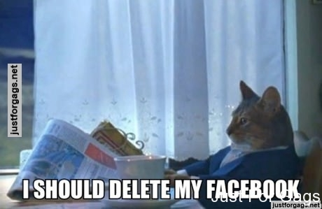 After browsing Facebook for 30 seconds...